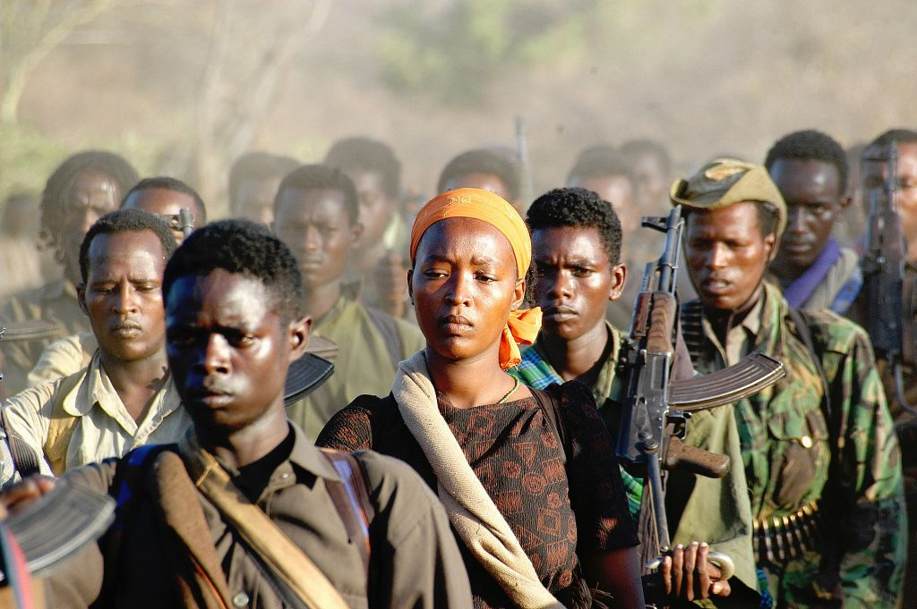 A rebel Oromo Liberation Front (OLF) unit is retreating into Kenya after weeks of fighting with government troops in central Kenya